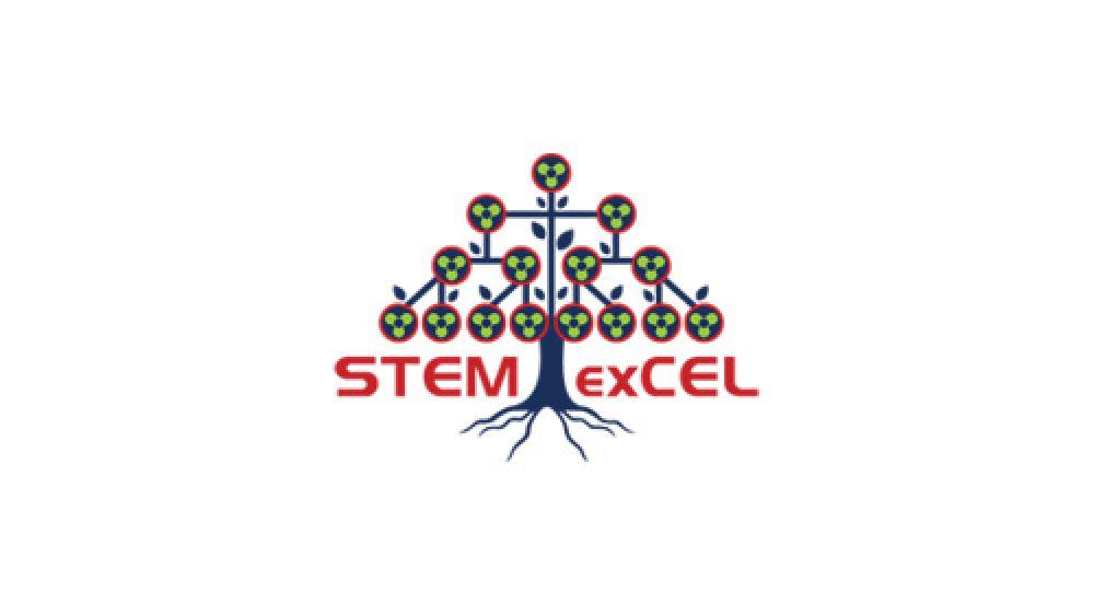 stemexcel-feat