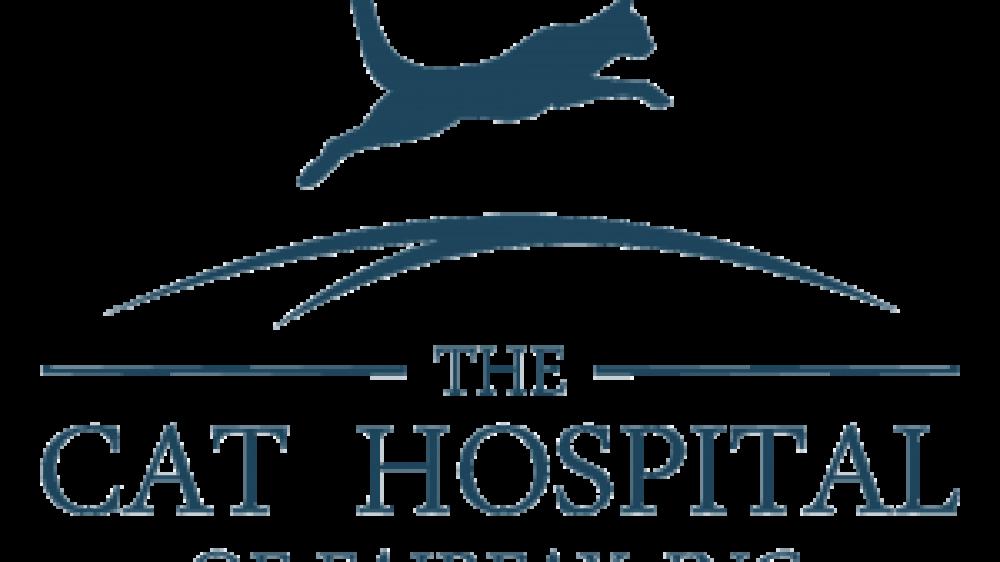 logo-cathospital-final